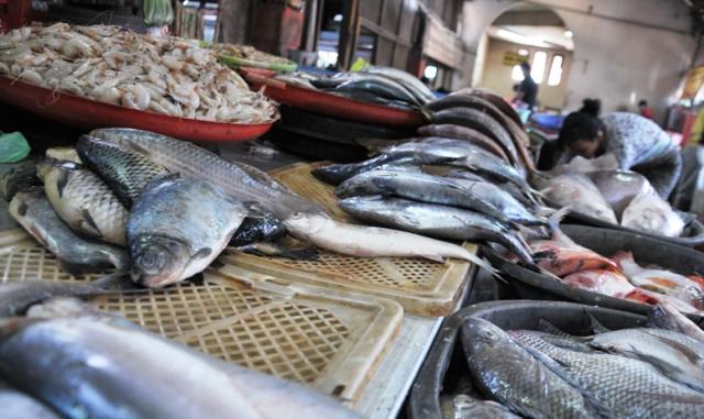 Jelang Ramadhan Polairud Perketat Hasil Tangkapan Nelayan