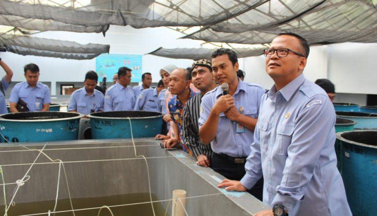 Forkopimda Jepara Sambut Rombongan Menteri Kelautan Dan Perikanan RI di BBPBAP